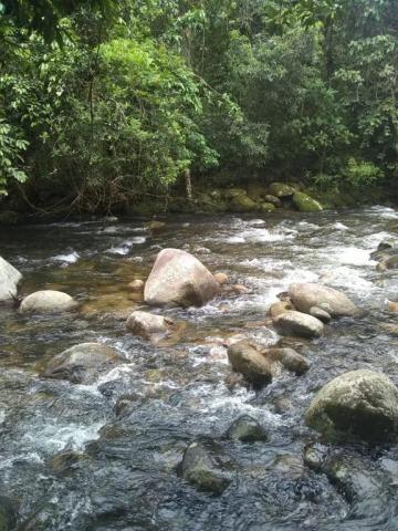 Terreno à venda em Parque veneza, Cachoeiras de macacu cod:TE0116 - Foto 8
