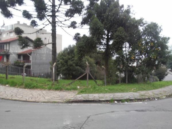 Terreno para alugar em Santa lucia, Caxias do sul cod:10765 - Foto 3
