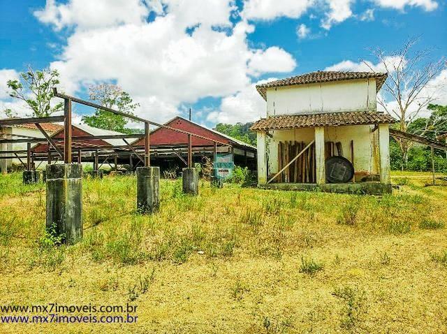 Fazenda mista de cacau e gado. Área de 203 Hectares - Foto 5