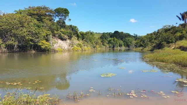 Maravilhosa Fazenda em Barrolândia, Belmonte - BA com 809 Hectares... - Foto 12
