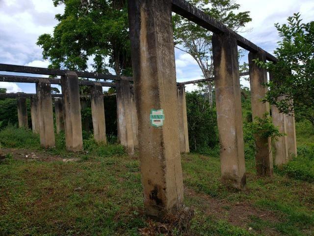 Ubaitaba. Fazenda produtiva de 139 Hectares a beira do asfalto. - Foto 2