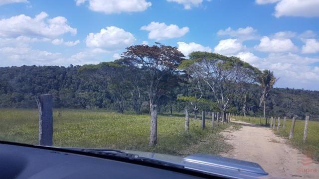 Maravilhosa Fazenda em Barrolândia, Belmonte - BA com 809 Hectares... - Foto 5