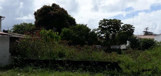 Lote em Maracaípe- Excelente metragem e localização!! Preço único!!