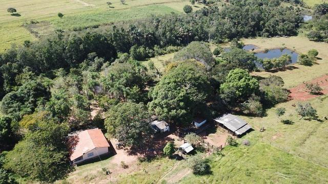 Fazenda 16.5 Alqueires ( 80 ha) Aragoiânia-GO