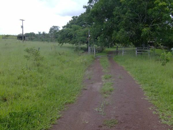 Fazenda escriturada formada ao lado de Brasília troca 61 9  * - Foto 3