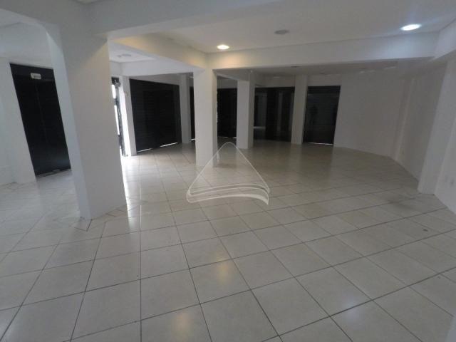 Loja comercial para alugar em Centro, Passo fundo cod:11864 - Foto 3
