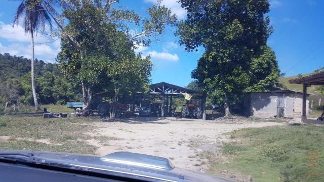 Maravilhosa Fazenda em Barrolândia, Belmonte - BA com 809 Hectares... - Foto 6