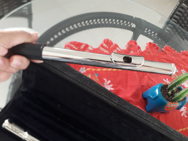Vendo Flauta Transversa - Novinha ou troco por teclado. - Foto 5
