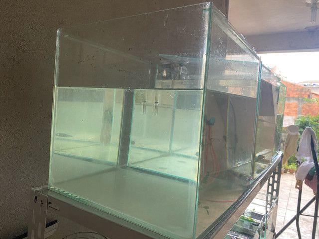 Aquário 30 litros  - Foto 2