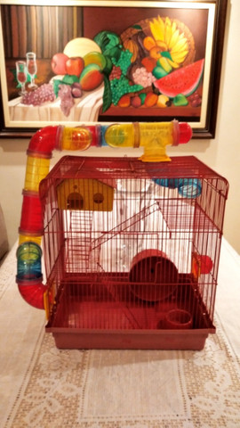 Casa para Roedores - Foto 2