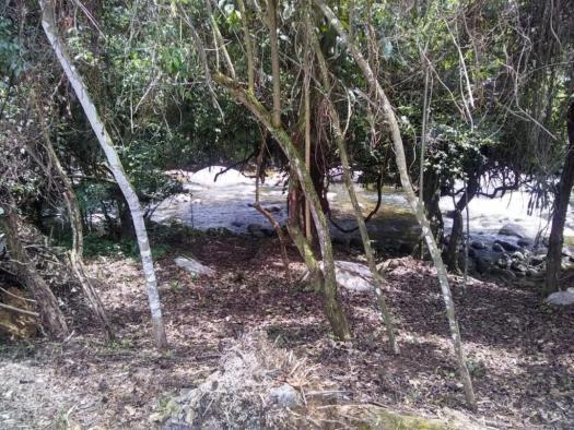 Terreno à venda em Parque veneza, Cachoeiras de macacu cod:TE0116 - Foto 3