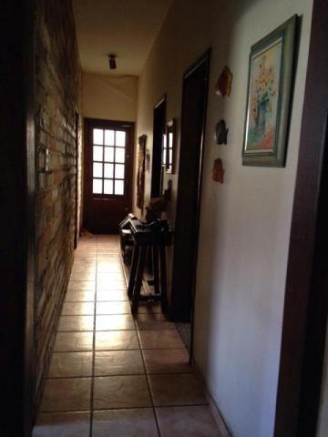 Casa à venda com 3 dormitórios em Padre eustáquio, Belo horizonte cod:2289 - Foto 3