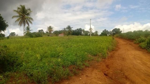 Excelente propriedade de 4 hectares, em Dois Leões, Pombos-PE