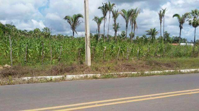 Terreno de 15.000 m² dentro da cidade de Monsenhor Gil - Ótimo para ser loteado