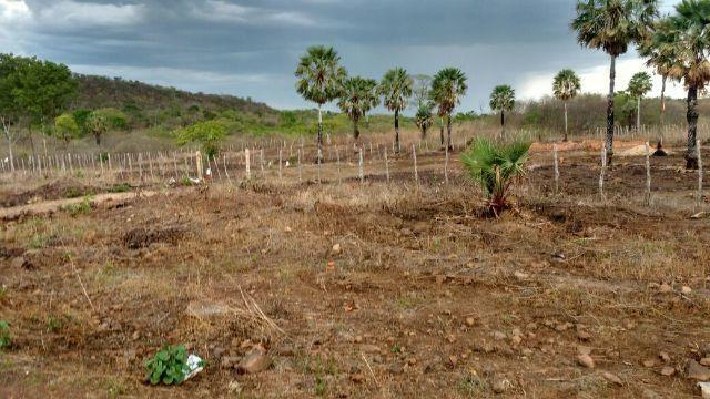 Terreno na PI-327 piripiri-piaui