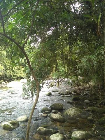 Terreno à venda em Parque veneza, Cachoeiras de macacu cod:TE0116 - Foto 6