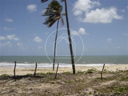 Terreno à venda em Muriú, Ceará-mirim cod:736654 - Foto 3