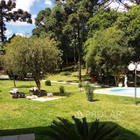 Chácara para alugar em Nossa senhora da saude, Caxias do sul cod:11005 - Foto 4