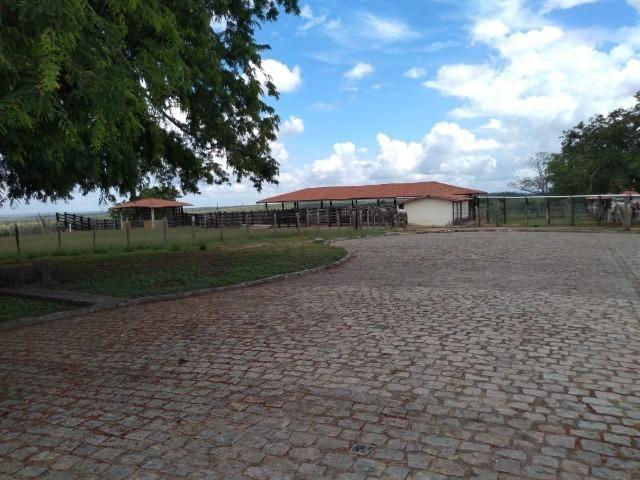 Maravilhosa fazenda na região rural de Baixa Grande Bahia, a 150 km de Feira de Santana - Foto 12