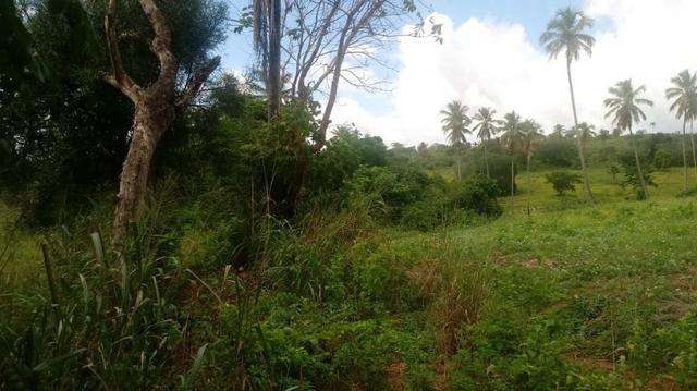 Excelente propriedade de 4 hectares, em Dois Leões, Pombos-PE - Foto 2