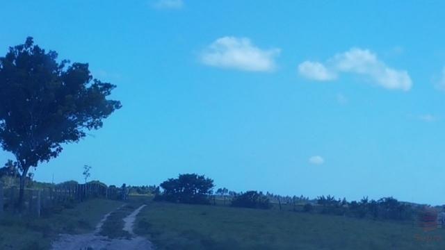 Maravilhosa Fazenda em Barrolândia, Belmonte - BA com 809 Hectares... - Foto 10