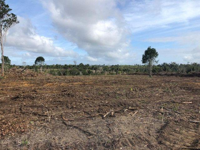 Vendo fazenda na Bahia com 100 hectares (1.000.000 m²)