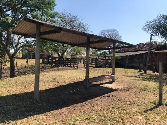 Fazenda a venda em Piracanjuba de 20 alqueires para Pecuária e lavoura - Foto 7