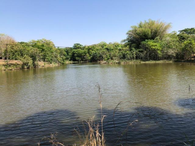 Fazenda a venda em Piracanjuba de 20 alqueires para Pecuária e lavoura - Foto 2
