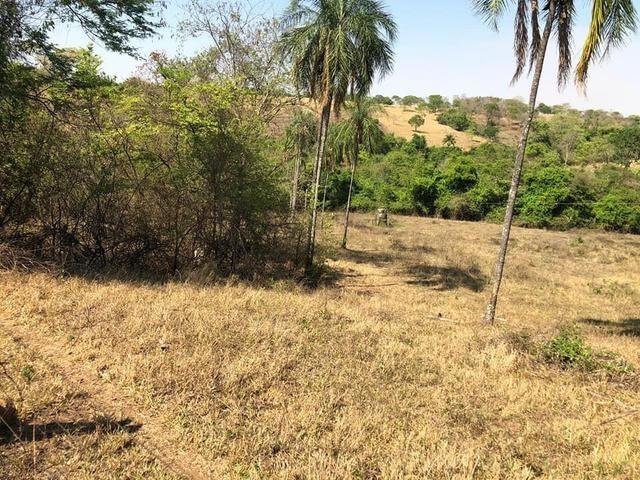 Fazenda a venda em Piracanjuba de 20 alqueires para Pecuária e lavoura - Foto 19