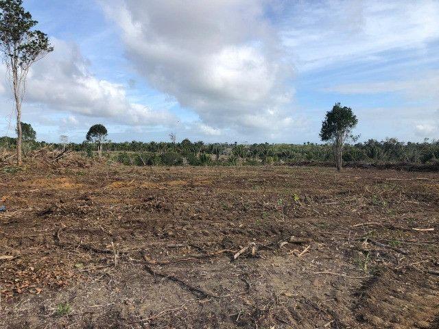 Vendo fazenda na Bahia com 100 hectares (1.000.000 m²) - Foto 8