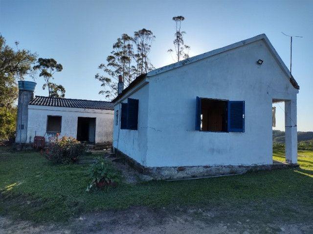Fazenda na Cascata - 75 ha - Pelotas - RS - Foto 14