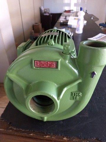 Motobomba THS 18 5 CV trifásica - Foto 2