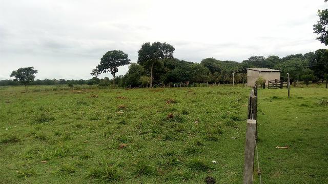 Fazenda 10 km da cidade Cuiaba - pedra 90 - Foto 4
