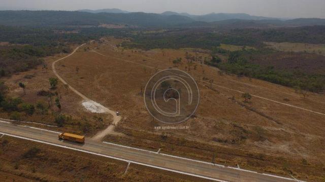 Fazenda 1.000 ha beira do asfalto - Foto 7