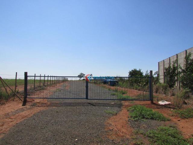 Terreno para alugar, 4000 m² por R$ 1/mês - Sitio Santana - Sumaré/SP