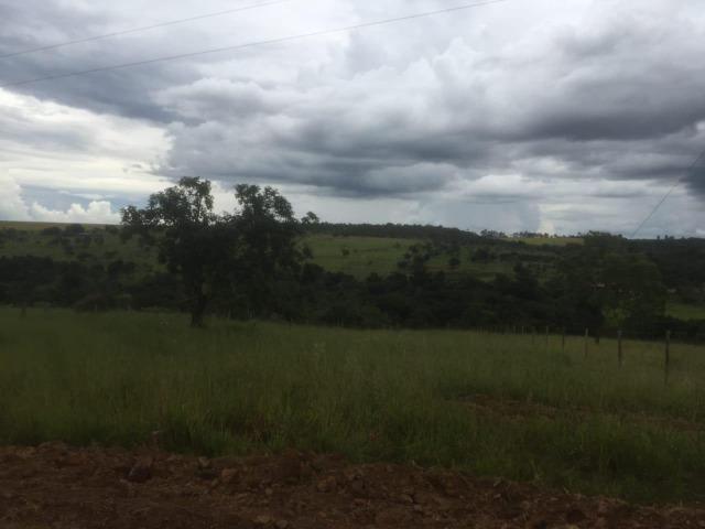 4 Alqueires c/ Rio p/ Lotear, Haras, Lazer, Gado. 40 km Anápolis-GO - Foto 5