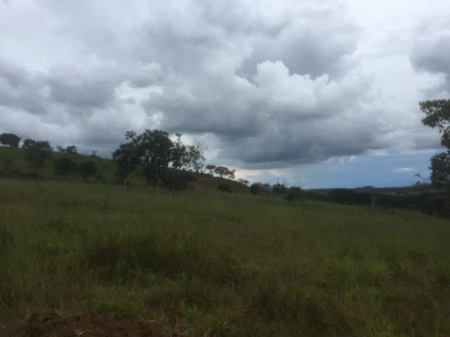 4 Alqueires c/ Rio p/ Lotear, Haras, Lazer, Gado. 40 km Anápolis-GO - Foto 18