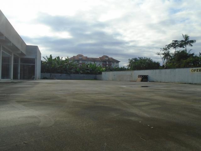 Terreno para alugar em Santo antonio, Joinville cod:08135.002 - Foto 7