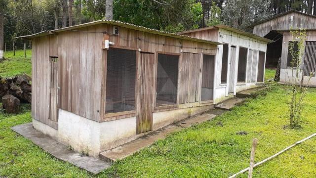 Sitio à venda, 40.500,00M² por R$400.000,00 - RIO DO SALTO - RIO NEGRINHO/SC - Foto 2
