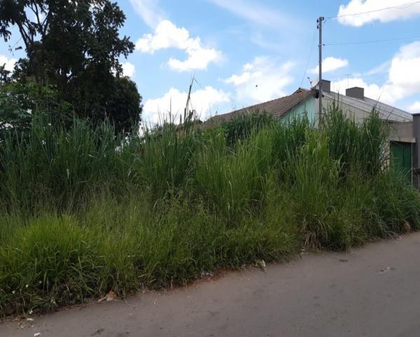 Terreno à venda com 0 dormitórios em Jardim dos buritis, Aparecida de goiânia cod:CGM038