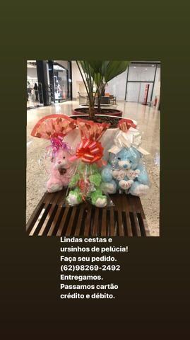 Lindas cestas e ursos - Foto 4