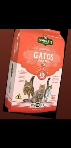 Ração para gatos baratas!