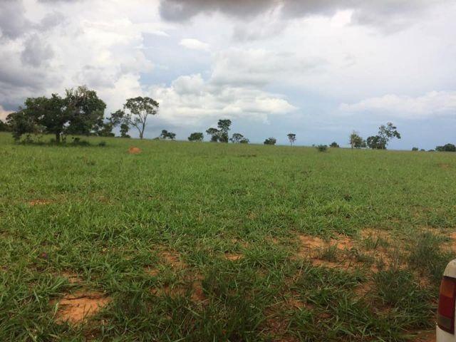 Fazenda rural à venda, Residencial Náutico, Três Marias. - Foto 6