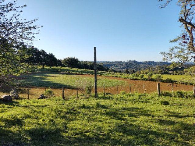 Fazenda na Cascata - 75 ha - Pelotas - RS - Foto 3