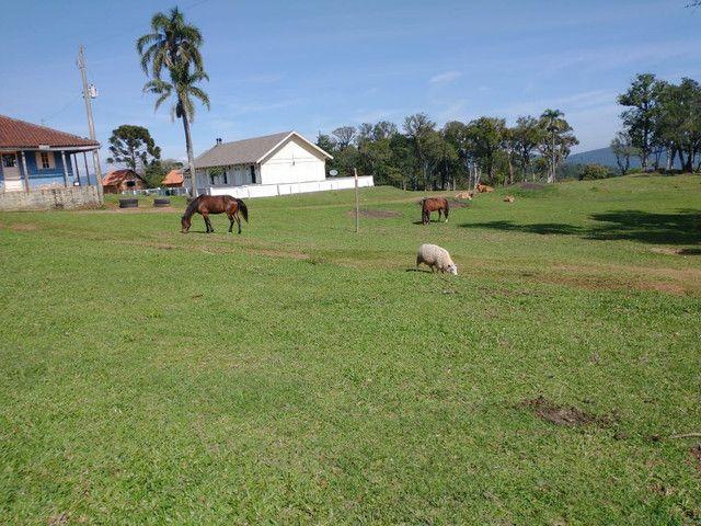 Cabana na Serra Gaúcha próximo à Gramado  - Foto 15
