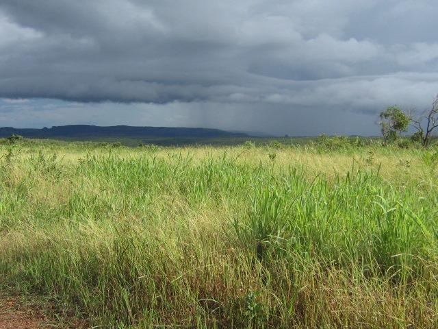 Almas-TO - Fazenda distante de Palmas 210 Km - Foto 18