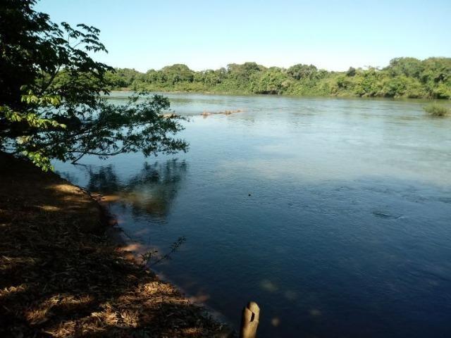 Chácara de porteira fechada na beira do rio Cuiabá com barco gado cavalo casa boa - Foto 5