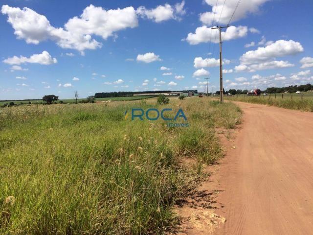 Rural - Não tem bairro - Foto 13