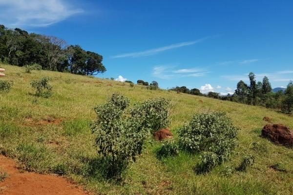 Vendo- Sítio no Sul de Minas com 26 hectares!! - Foto 8