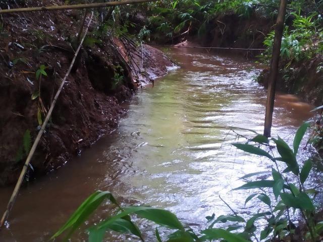 Chácara de 2000 mts água corrente e pagto facilitado - Foto 15